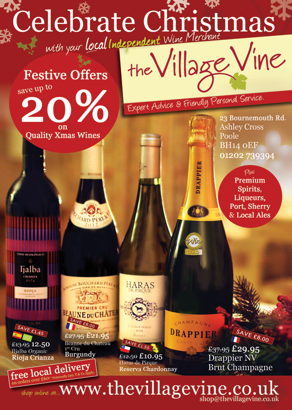 the-village-vine-flyer